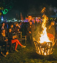 Electric Picnic Festival